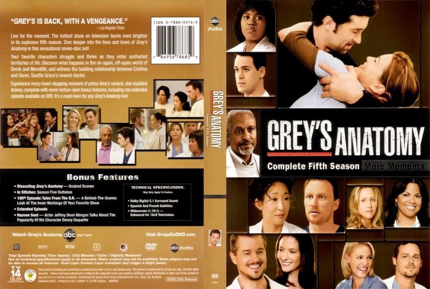 Greys Anatomy Season 10 Dvd Sceneups