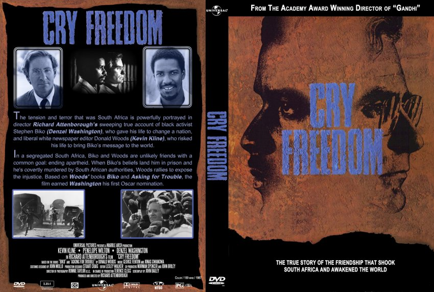 cry freedom quiz Quiz creator for powerpoint battle cry of freedom - title: the powerpoint ppt presentation: cry freedom is the property of its rightful owner.