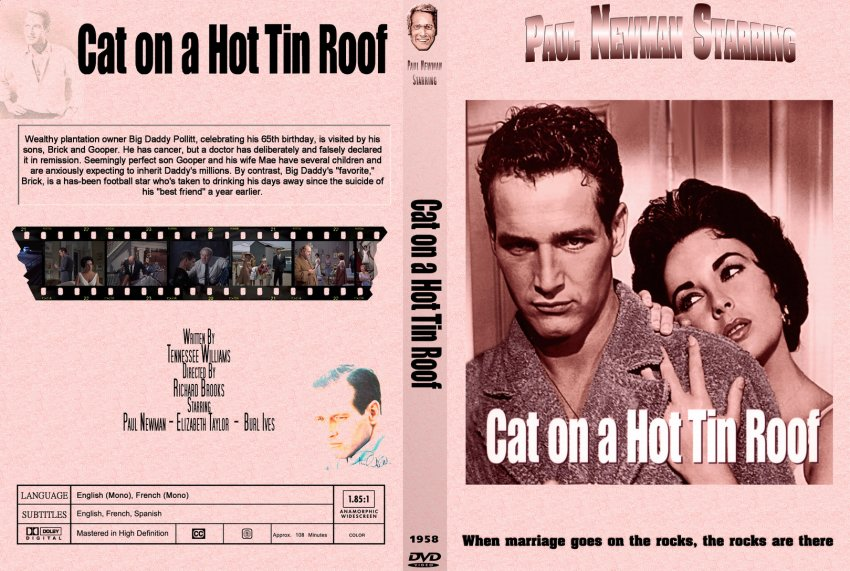 cat on a hot tin roof + mendacity + essay