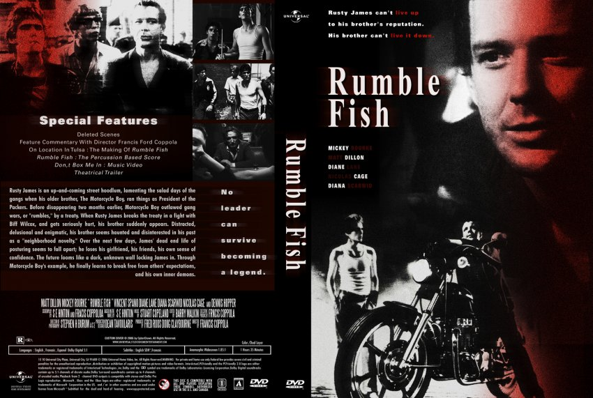 an essay on rusty james and motorcycle boy